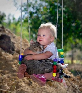 cat-communication-with-baby.jpg