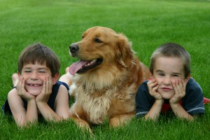 dog-with-kids.jpg